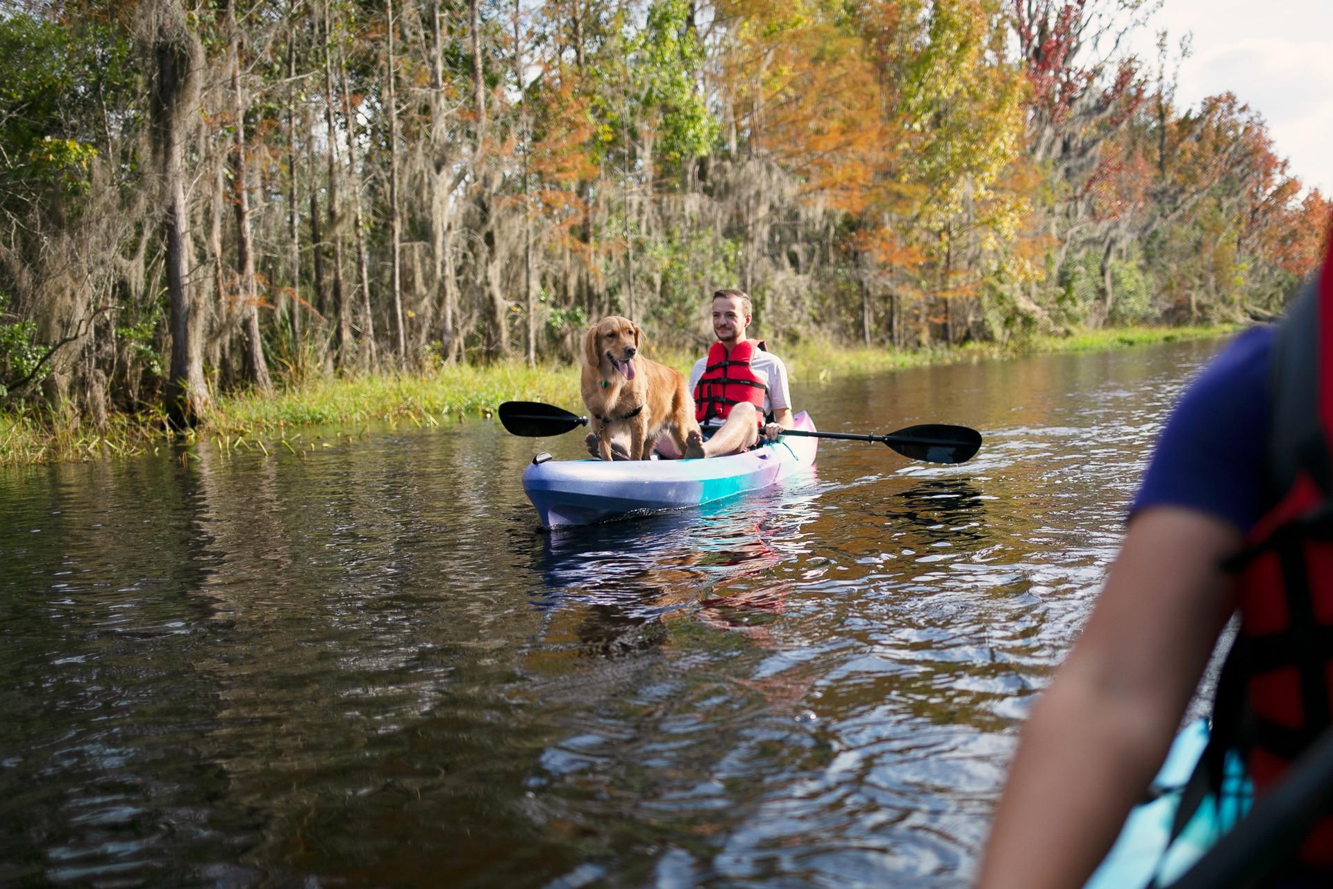 Man and dog in kayak